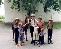 Amish children with a colt.