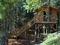 A Standard Treehouse