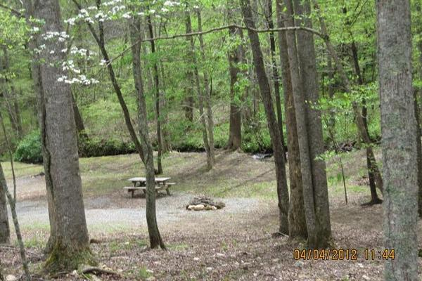 Primitive Tent sites - creekside