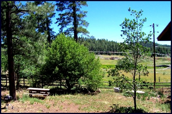 Picnic area overlooking meadow