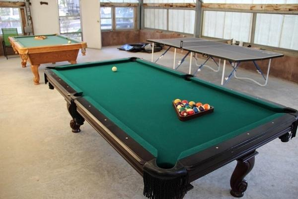 Play Pool or Ping Pong Close to your Back Door